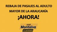 Rebaja Pasajes Al Adulto Mayor De La Araucanía